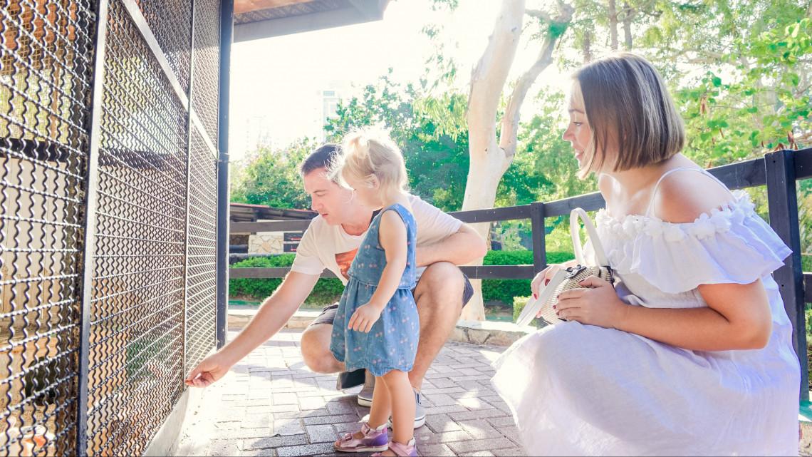 Hihetetlenül aranyos ikerpár született: fotókon a vidéki város sztárjai