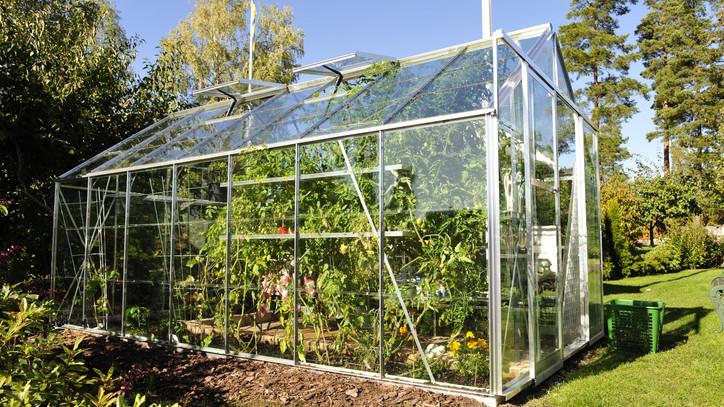 Milliárdos segítség a kertészeteknek: itt vannak a részletek, hogy élesztenék fel az ágazatot