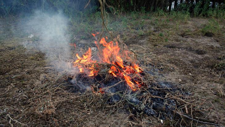 Az egész országban betiltják az égetést: mit lehet kezdeni az avarral, zöldhulladékkal?
