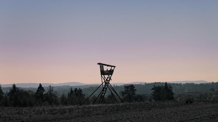 Fontos hírt jelentett be a Vadászkamara: már online is érvényesíthetők a vadászjegyek