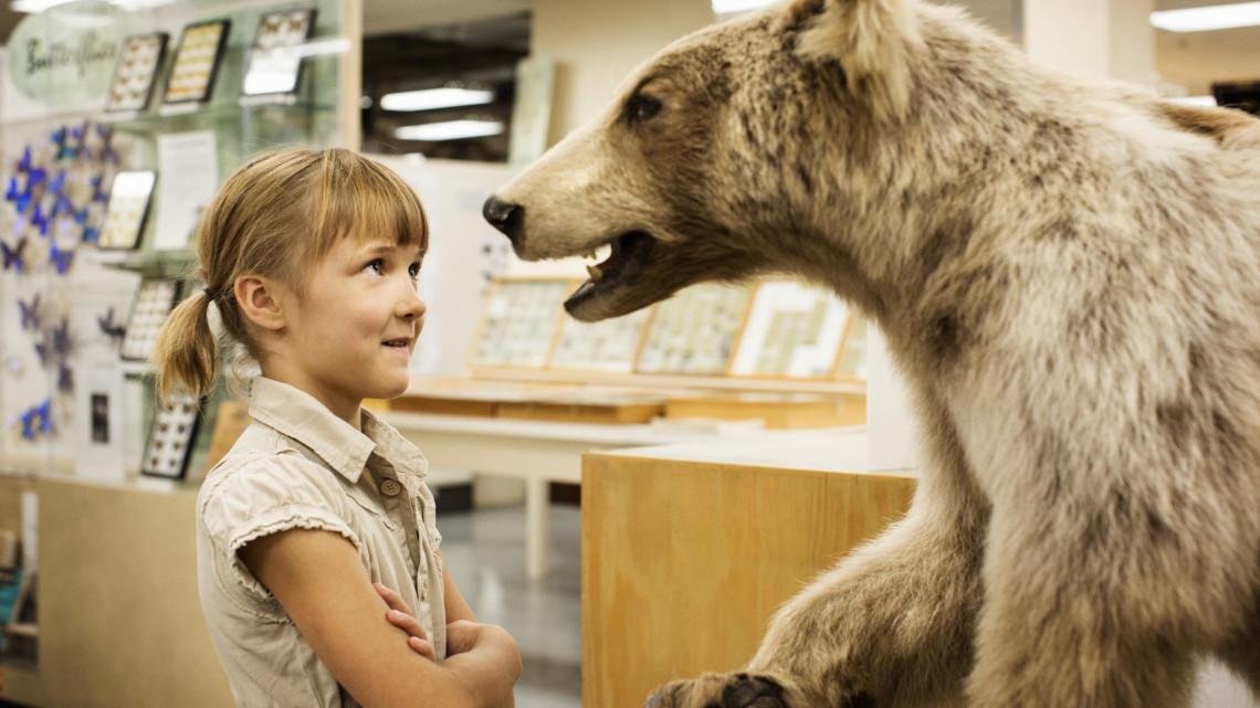 Kiderült az igazság: eldöntötték, hogy mi lesz a Természettudományi Múzeum sorsa