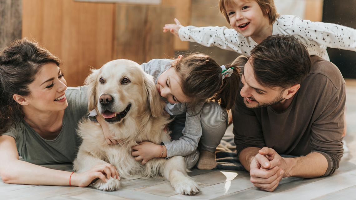 A családosok kedvencei: íme, ez az 5+1 legjobb kutyafajta kisgyerekeseknek