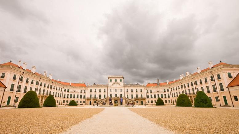 Kezdődik a szüret: gyűjts levendulát az Esterházy-kastély kertjében