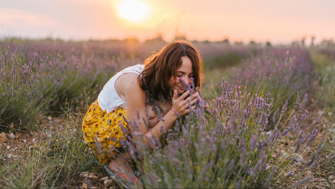 Óriási biznisz a levendula: ezért érdemes belevágni egy ültetvény telepítésébe