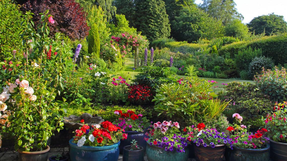 Ezek a legfontosabb kerti munkák júliusban: itt a 7 pontos feladatlista a kánikulára