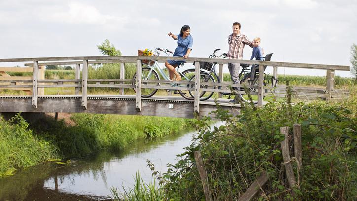 Több száz milliós beruházás: itt épül gyalogos-kerékpáros híd a Dunán
