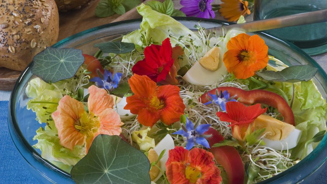 Ehető virágok a konyhában: ehető virágok listája, ehető virágok tortára, salátába