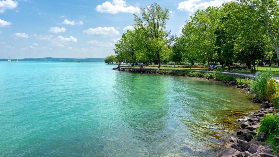 Egyre rosszabb a helyzet: kezdik ellepni a kékalgák a Balaton vizét, súlyos hatásuk lehet a fürdőzőkre