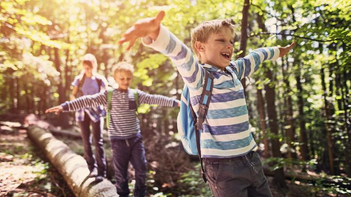 Tematikus ösvények és kirándulási tippek: ezt minden családnak érdemes kipróbálni