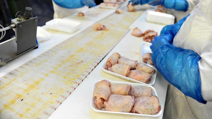 Kapacitásbővítés: több száz millióból gazdálkodhat a Zala megyei baromfifeldolgozó
