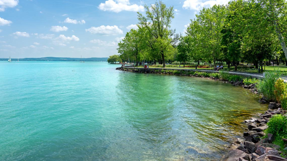 Pusztulnak a halak a Balatonban? A szakértők szerint ez lehet az oka