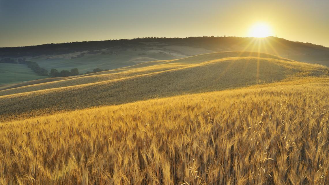 Ezt látnod kell: elképesztő képeken a Nógrád megyei napfelkelte