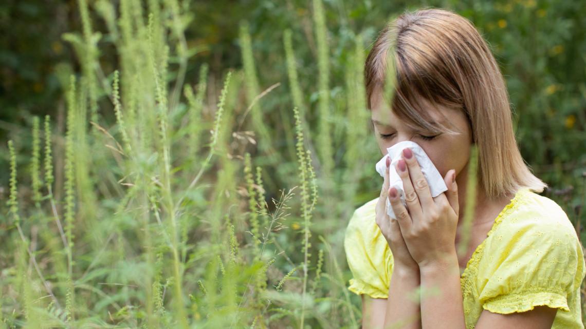 Érdemes idén is felkészülni az allergiásoknak: mutatjuk, mire kell nagyon figyelni
