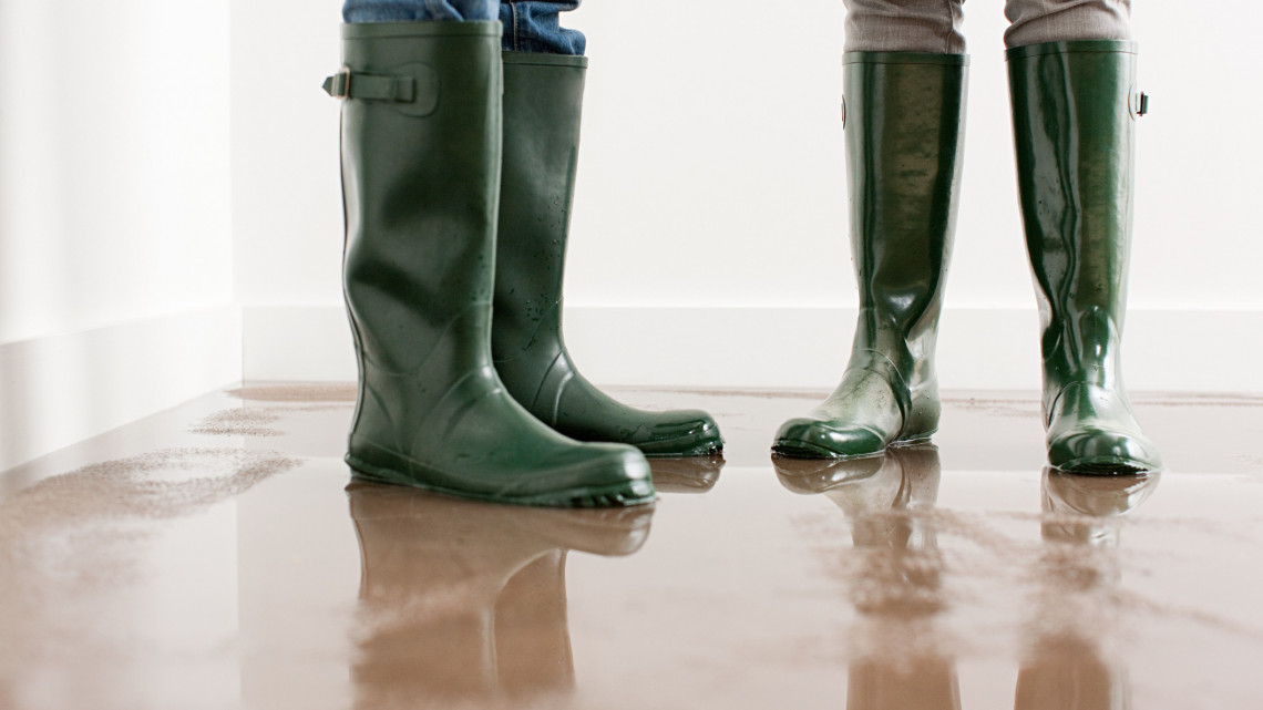 Az esőzések után újabb veszedelem? Ezt tehetjük, ha otthonunkat fenyegeti a baj