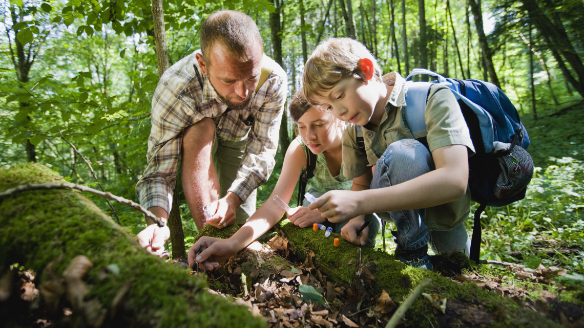 Itt ismerhetik meg a legfiatalabbak környezetünket: több száz millióból fejlesztették a különleges parkot
