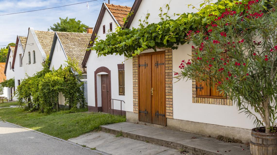 Ez az 5 apró magyar falu mentheti meg az országot a klímakatasztrófától