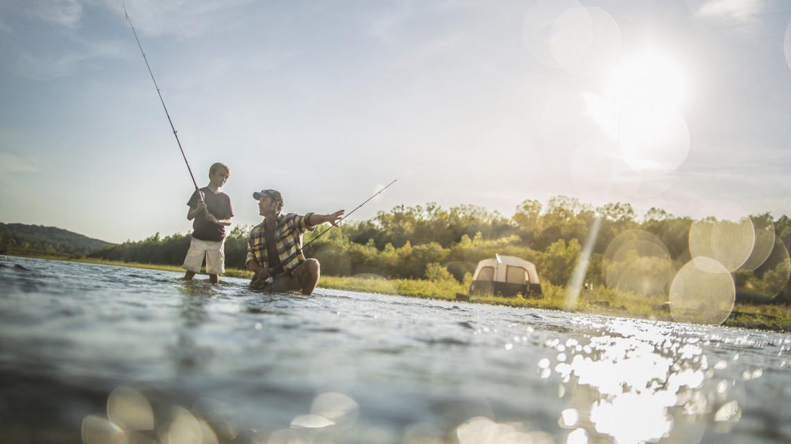 Kiderült, mi okozza a balatoni halak pusztulását: kell félnünk a tetemektől?
