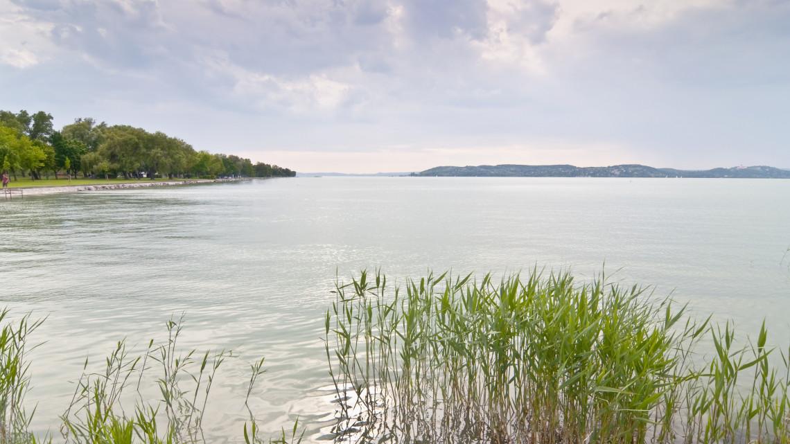 Elképesztő, mit találtak a Balatonban: biohaltakarmány készülhet a különös lényekből
