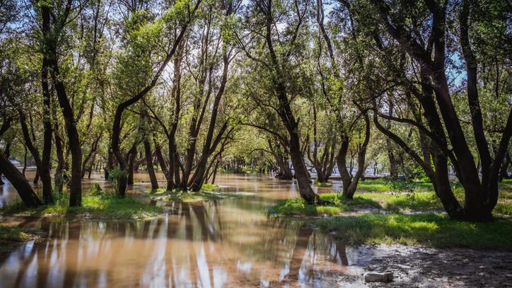 Autósok, figyelem: két út egy-egy szakasza járhatatlan Borsodban az árvíz miatt