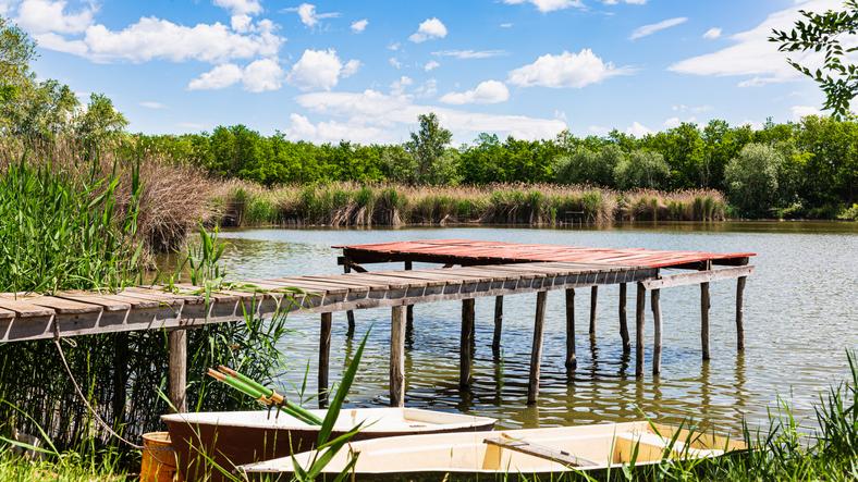 Elképesztő, mi került horogra: idegen halfajt fogtak a Hévízi-tó kifolyó vizében