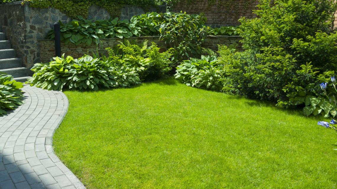 Ezt rontja el rengeteg kerttulajdonos: erről tudnod kell, ha jövőre is gyönyörű gyepet akarsz