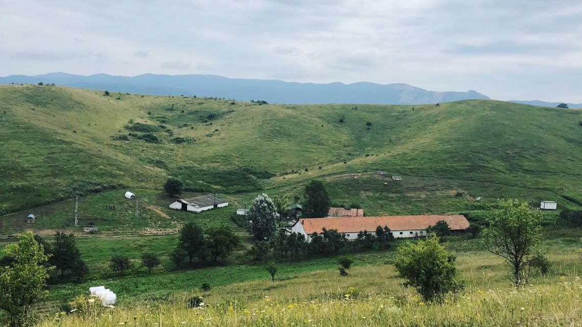 Két bevállalós fiatal hozta létre a semmi közepén: ez a farm menti meg a magyar mezőgazdaságot?