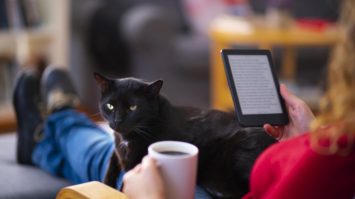 Ebook letöltés ingyen: az ingyenes ebook letöltés az olvasás forradalma?