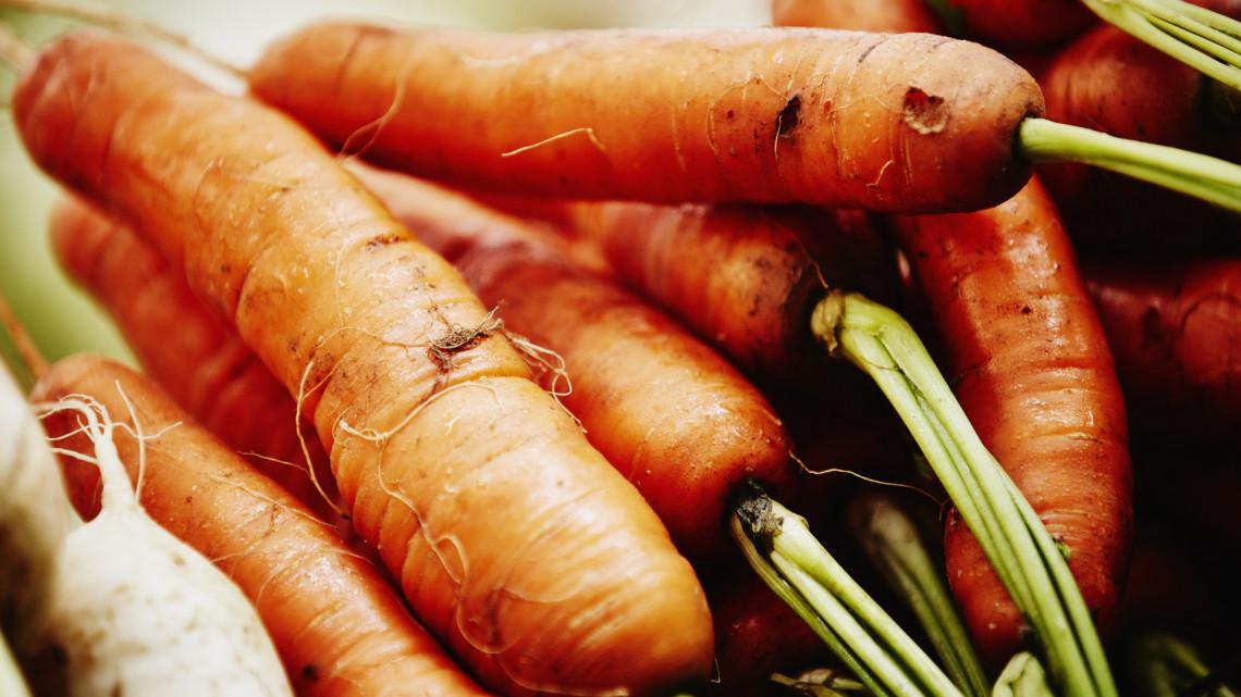 Ne hagyd, hogy pocsékba menjenek: így tárold ősszel a zöldséget, gyümölcsöt