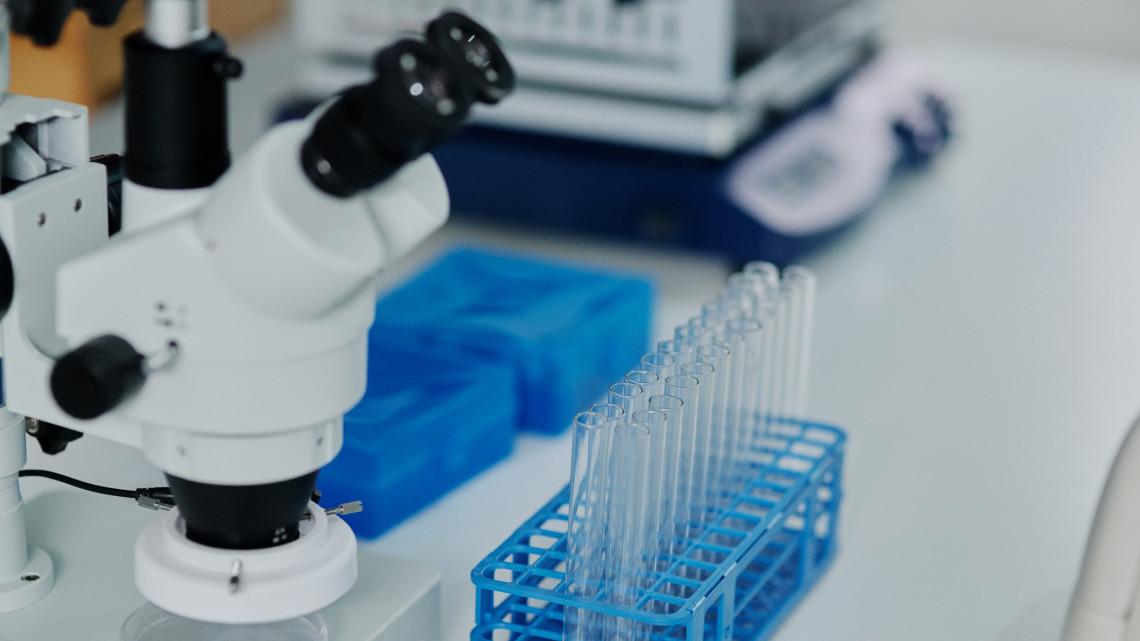 Magyar siker: hatalmas előrelépés a koronavírus kutatásában