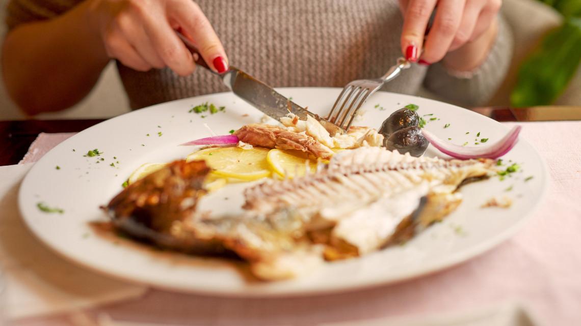 Elmagyarázta a halbiológus: ezért jó böjti ételnek is a hal