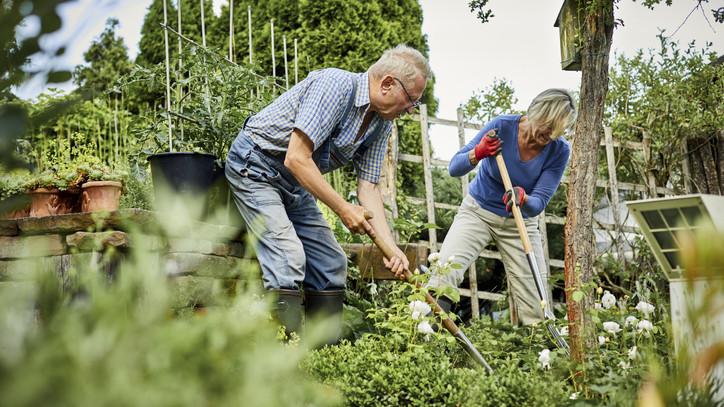 Ezért éli most aranykorát a városi kertészkedés: 4 jó indok, hogy te is belevágj