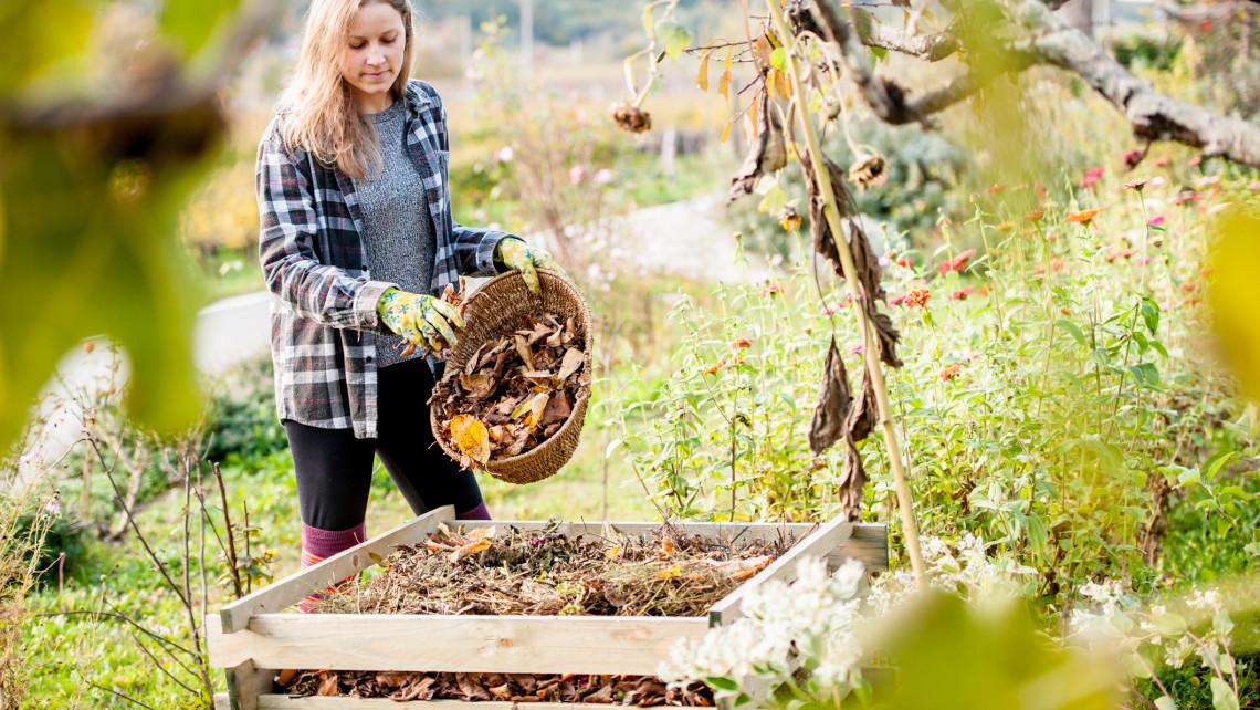 Ez a profi kertészek legfontosabb tippje: így készítsük fel a kertet a hidegebb napokra