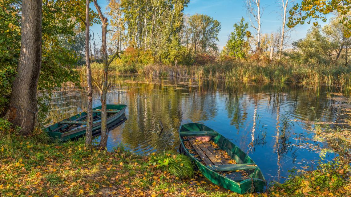 Luxus a vízparton: ennyi pénzt költött el 2020-ban egy átlag magyar horgász