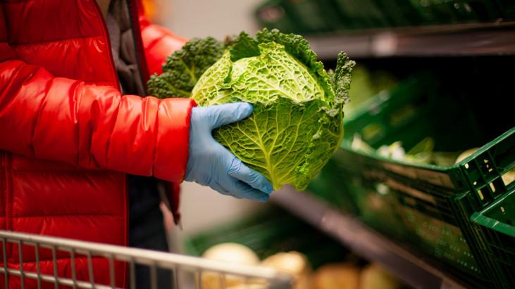 Csalódottak a káposztatermesztők: kiszorítja az import zöldség a magyar terméket?