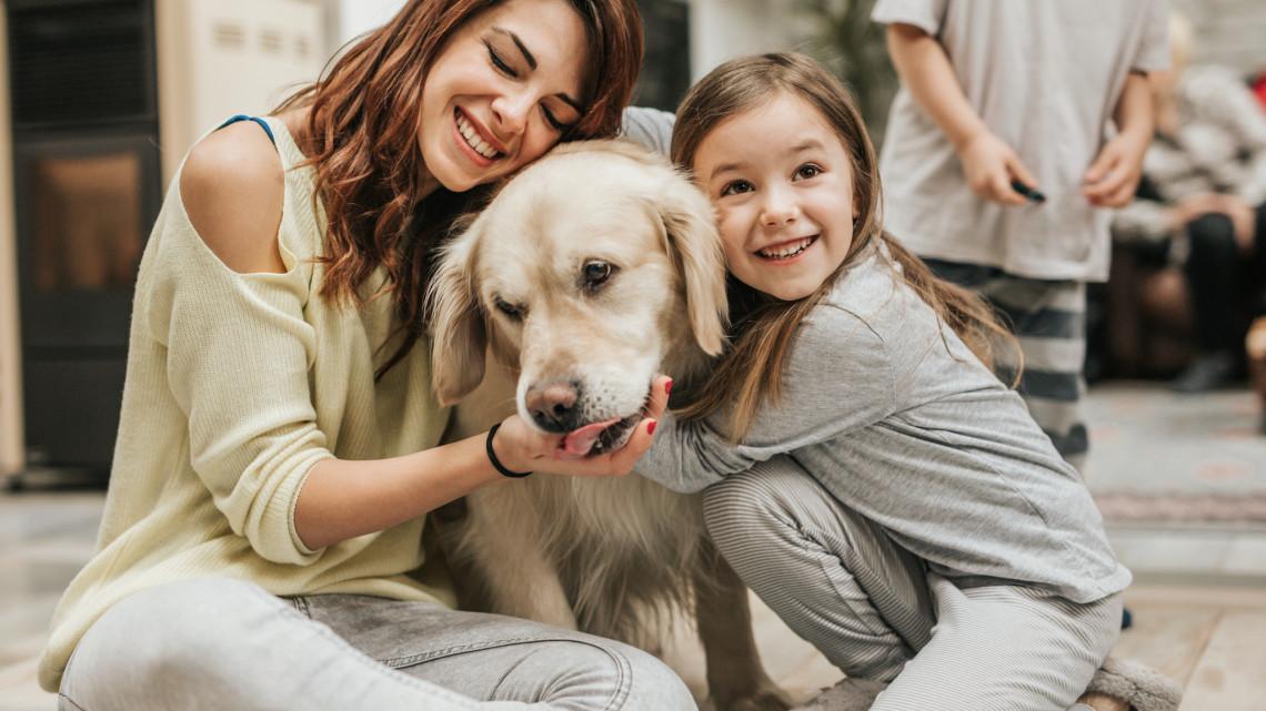 Ezt sokan nem tudták: súlyos betegséget is jelezhet, ha ezt csinálja a kutyád