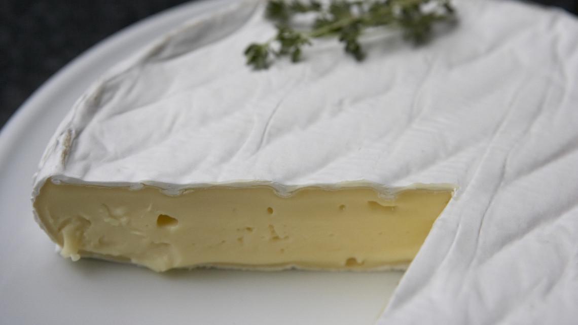 Vigyázat, hasmenést okozó baktérium lehet ebben a sajtban: ne edd meg, vidd vissza a boltba!