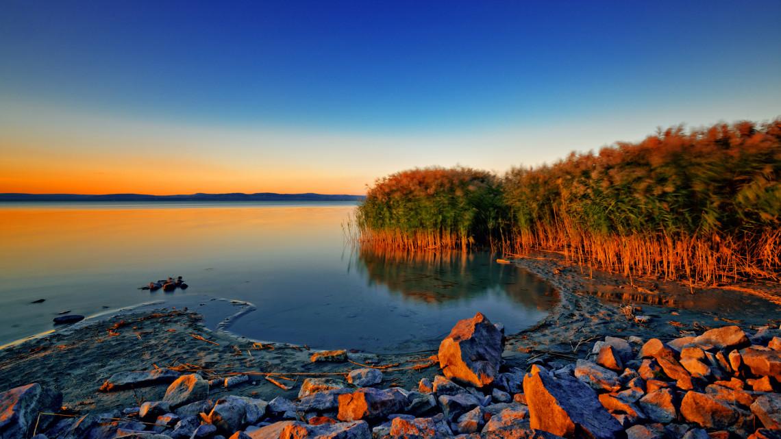 Brutális nádirtás a Balatonnál: markolóval tarolták le a partszakaszt a természetkárosítók