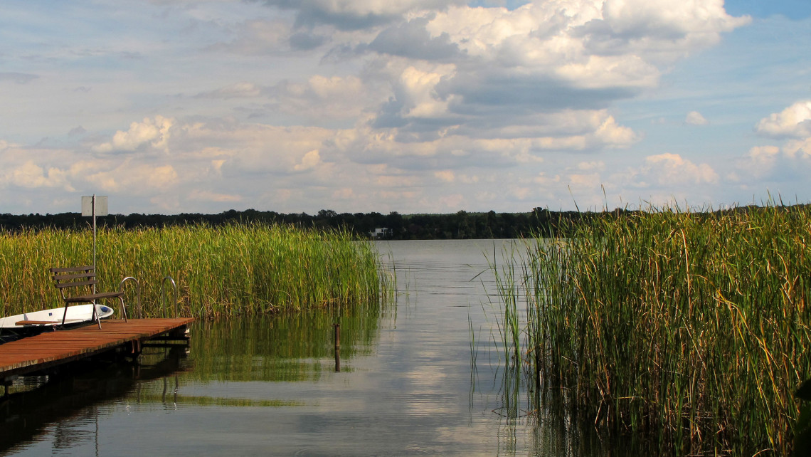 Kiderült: így hat a halgazdálkodás természetes vizeinkre