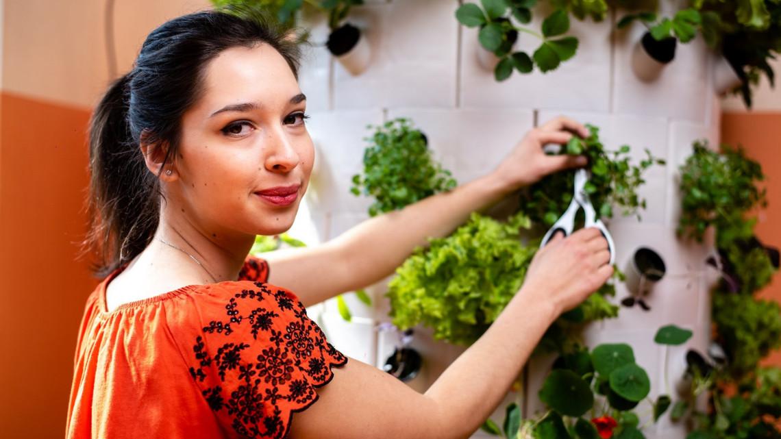 Forradalom a növénytermesztésben: így tenné környezetbaráttá a mezőgazdaságot egy debreceni lány