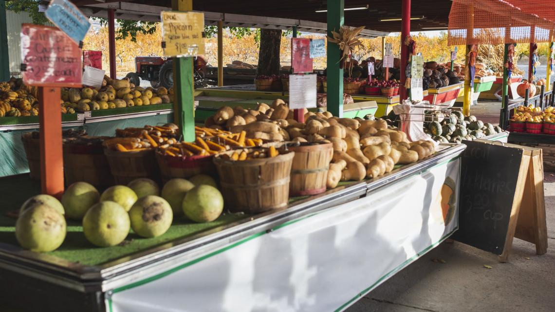 Koronavírus: újabb városban vezettek be vásárlási sávot, döntött a polgármester