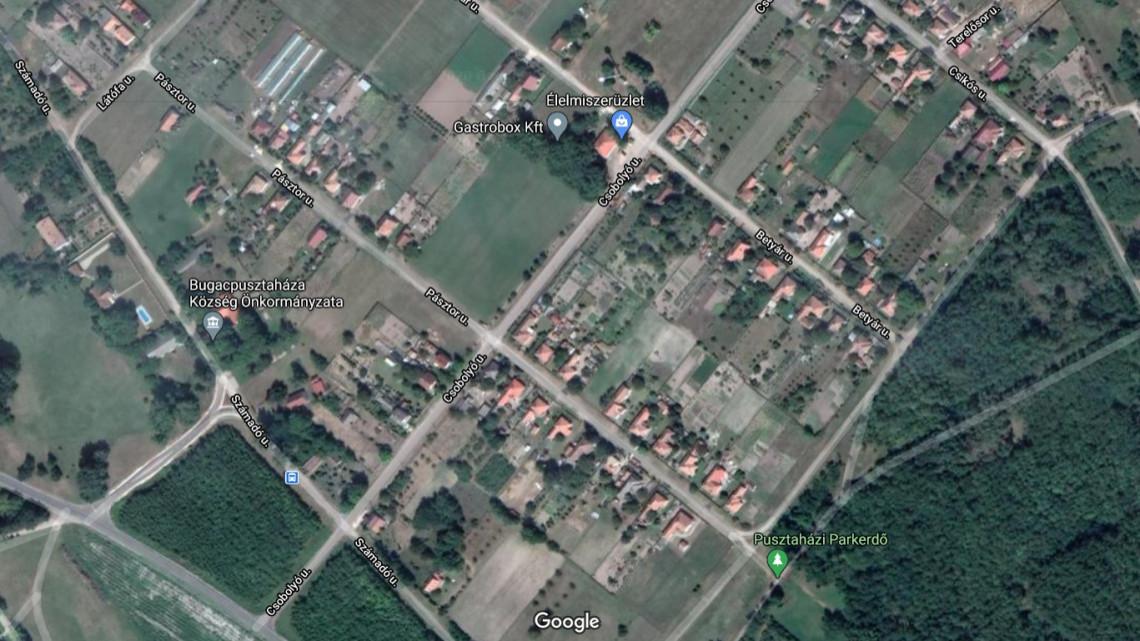 Csodájára járnak a Bács-Kiskun megyei falunak: sehol máshol a világon nincs ilyen