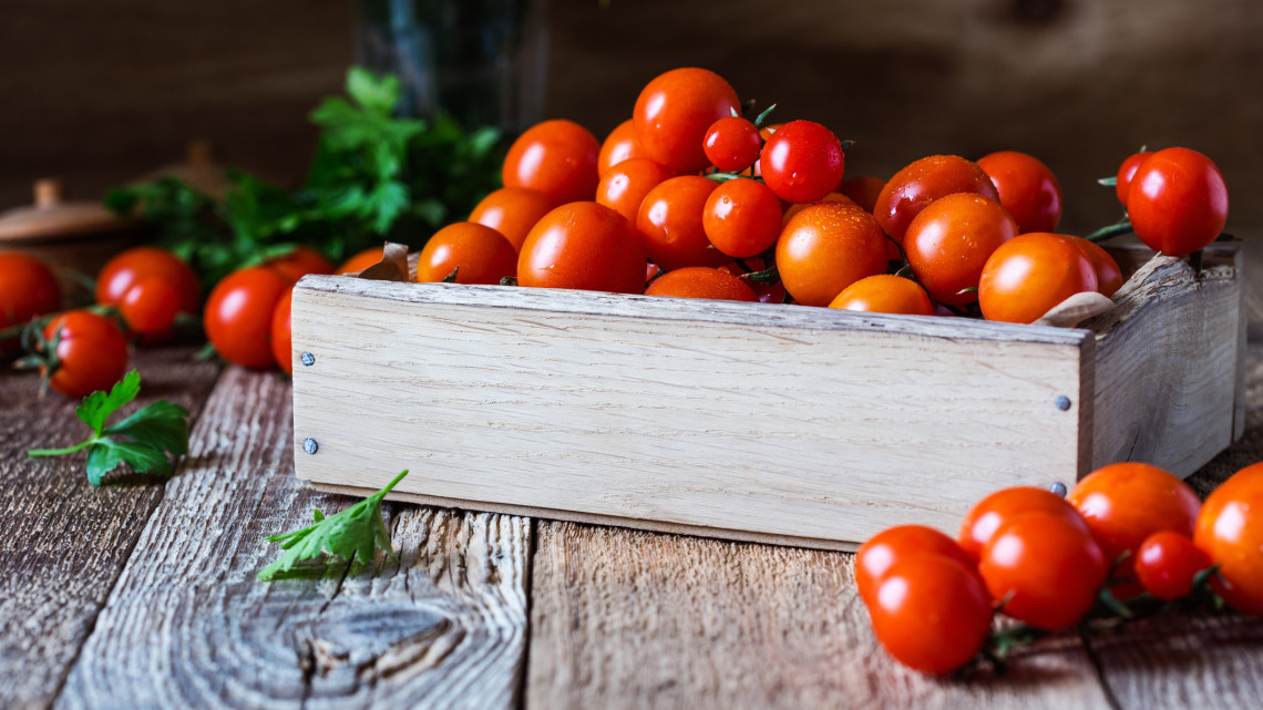 A paradicsom kalória tartalma: 1 paradicsom hány kalória, sűrített paradicsom kalória tartalom