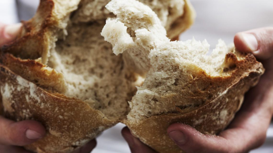 Ez undorító: gyomorforgató állapotok uralkodtak a kenyérgyárban, bezárta a Nébih