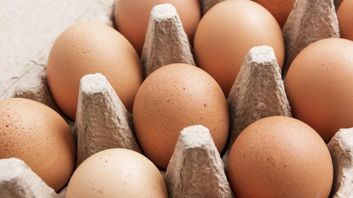 Adománnyal segítik a rászorulókat: így jut tojás a nélkülöző családok húsvéti asztalaira
