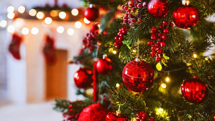 Meglepő dolog derült ki a hazai karácsonyfákról: erre készülj 2020-ban