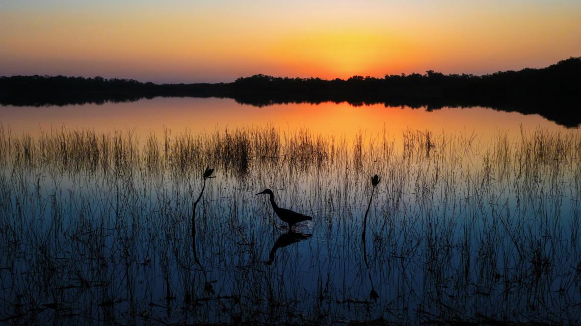 Nyáron sorra járod majd a nemzeti parkokat: elképesztő programokkal várják a látogatókat