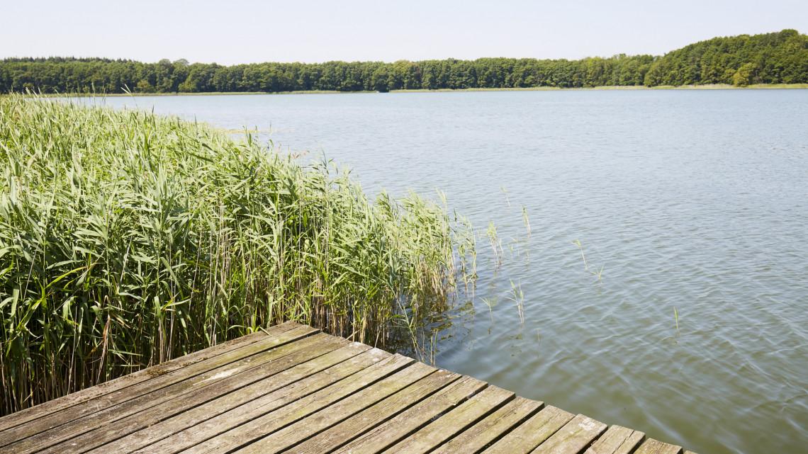 Durva átalakulás: borzalmasan romlik a vízminőség, hála az emberi tevékenységnek