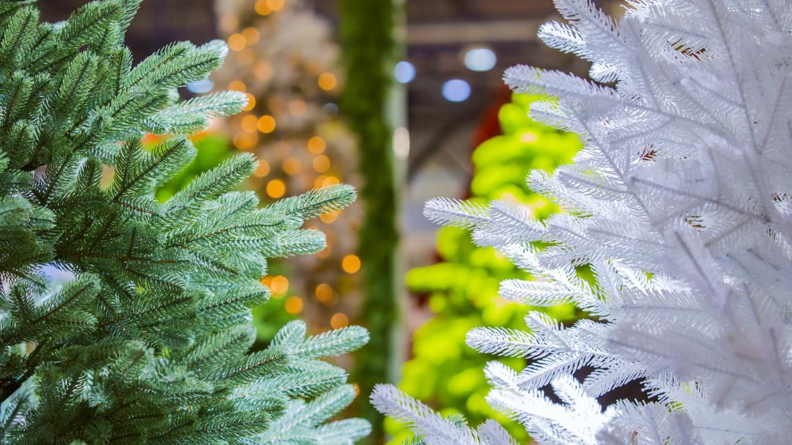 Olsóbb lehet a karácsony: méregdrága vágott fenyőfa helyett ez is tuti megoldás