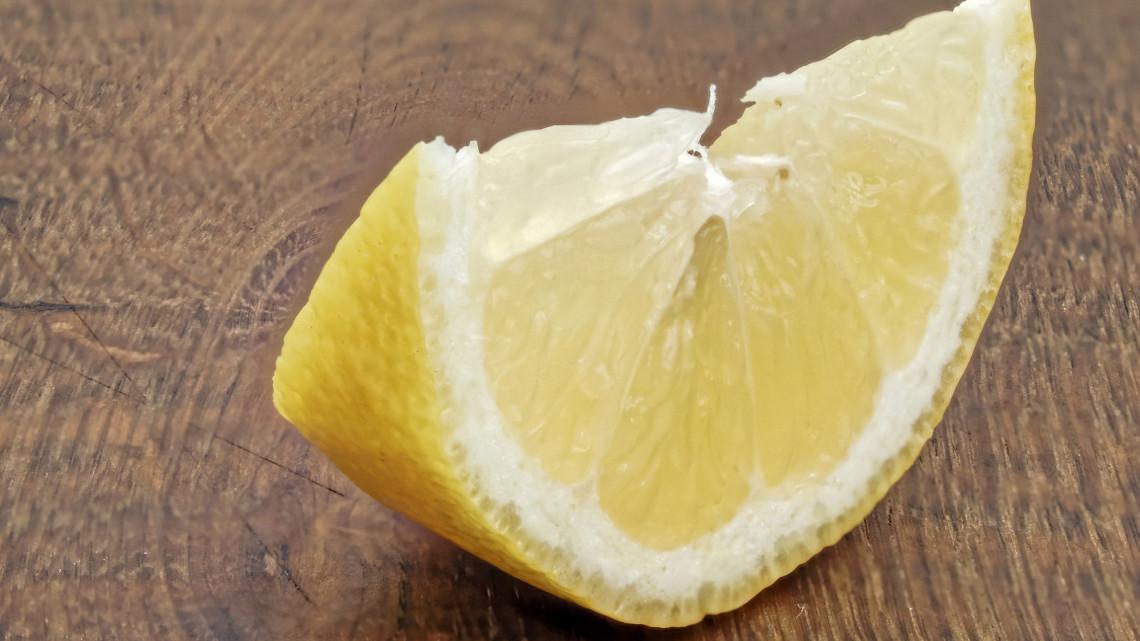 Nem sárga, nem fanyar és a miénk: ebben a vidéki kertészetben terem a magyar citrom