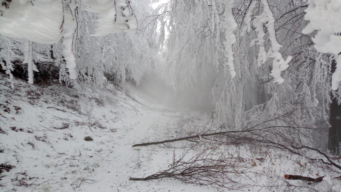 Havazás és szibériai mínuszok jönnek: nincs mese, tél van